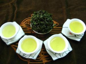 杭州茶博会6日启动 四大嗨点尽享茶世界