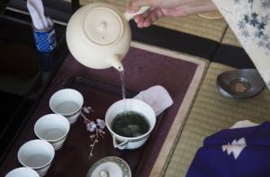 煎茶道是怎么回事?带你去小笠原流煎茶道八月茶会!