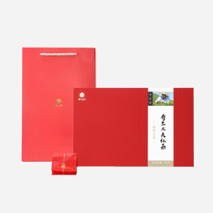 李彦晨茶师亲制 | 奇兰工夫红茶100g(含提袋)